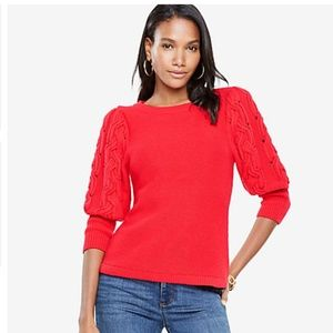 NWT Ann Taylor red crewneck cable sleeve sweater